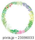 花 ハーブのフレーム 23096033