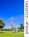 芝公園 東京タワー 風景の写真 23105691