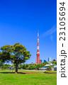 芝公園 東京タワー 風景の写真 23105694