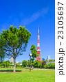 芝公園 東京タワー 風景の写真 23105697