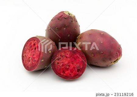 ウチワサボテンの実(オプンティアの実): Cactus Pear 23119216