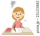 女の子 小学生 勉強のイラスト 23123882