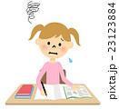 女の子 小学生 勉強のイラスト 23123884