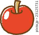 リンゴ フルーツ 果物のイラスト 23125731