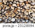 丸太 たきぎ 樹木の写真 23128094