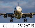 伊丹空港 飛行機 23129715