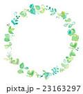 フレーム 新緑 若葉のイラスト 23163297