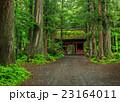 戸隠神社 奥社 神社の写真 23164011