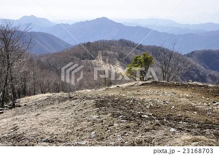 鷹ノ巣山山頂から水根山への石尾根縦走路 23168703