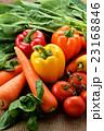 緑黄色野菜 野菜 生野菜の写真 23168846