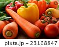 緑黄色野菜 野菜 生野菜の写真 23168847