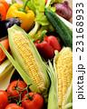 野菜 23168933