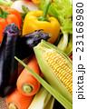 野菜 23168980