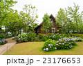 紫陽花 花 ロッジの写真 23176653