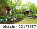 紫陽花 花 ロッジの写真 23176657