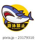遊泳禁止ステッカー ホオジロザメ 23179310