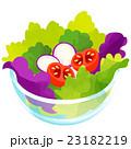 プチトマト ミニトマト ブロッコリーのイラスト 23182219