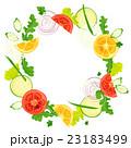 フレーム・野菜 23183499