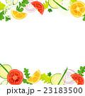 フレーム・野菜 23183500