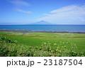 風景 北海道 利尻富士の写真 23187504