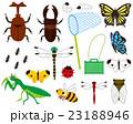 昆虫採集 23188946