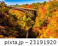 【宮城県】鳴子峡の紅葉 23191920