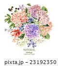 Floral Greeting Card with Blooming Hydrangea and 23192350