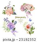 Set of vintage bouquet blooming hydrangea 23192352
