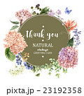 Floral Greeting Card with Blooming Hydrangea and 23192358