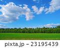 景色 風景 緑の写真 23195439