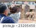 お爺ちゃんと孫(1才5カ月) 23205450