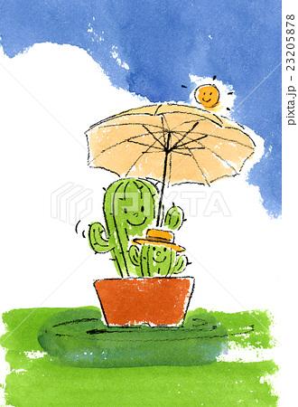 夏の日のサボテン 23205878