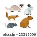 ベクトル げっ歯類 ネズミ目のイラスト 23212009