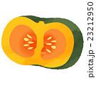 かぼちゃ 23212950