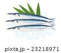 新鮮な秋刀魚 スーパー イラスト 23218971