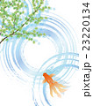 水面 23220134