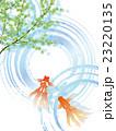 水面 23220135