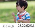 シャボン玉で遊ぶ男の子 23226258