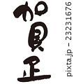 賀正 ベクター 筆文字のイラスト 23231676