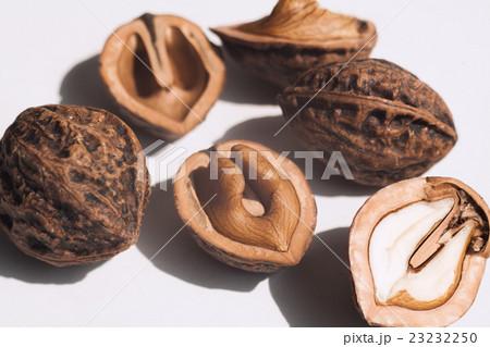 胡桃 ( くるみ ) の殻と実 23232250