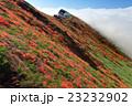 紅葉 秋 雲の写真 23232902