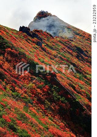 雲湧く紅葉の谷川岳稜線 23232959