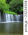 白糸の滝~長野県軽井沢町 23234508