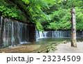 白糸の滝~長野県軽井沢町 23234509