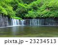 白糸の滝~長野県軽井沢町 23234513