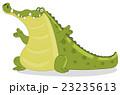 Crocodile 23235613