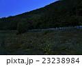 蛍 松尾峡 ほたる童謡公園の写真 23238984