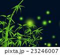 竹とホタルの光 23246007