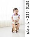 赤ちゃん 9ヶ月 23246159