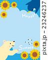 シロクマとペンギンの暑中見舞いイラスト 23246237